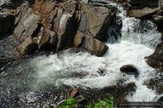 the sinks great smoky mountains national park - Google Search