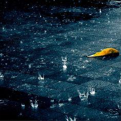 Risultato della ricerca immagini di Google per http://net.onextrapixel.com/wp-content/uploads/2010/04/rain10.jpg