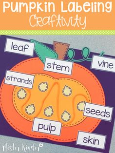 Looking for a cute and simple pumpkin labeling craftivity to go along with your pumpkin or fall unit? This craftivity includes all of the paper pieces you need to create and label parts of a pumpkin - you'll just need to supply the yarn! Simply print template onto white or colored paper, add some yarn, and let your students create!
