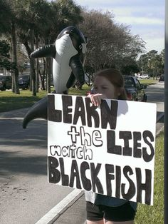 Protesting at Sea World after watching Blackfish the movie. Click through to an Open Letter to Sea World.