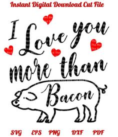 Valentines day I love you more than Bacon  pig