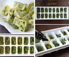 DIY - Food Tip: freeze fresh herbs in olive oil for easy seasoning.  From Growing Organic, Eating Organic