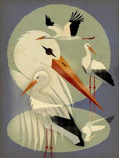 Storks by Dieter Braun - print Art And Illustration, Illustrations, Graphic Design Illustration, Art Mural, Framed Art Prints, Fine Art Prints, Animal Graphic, Art For Art Sake, Costumes