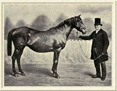 Pocahontas (GB) probably being held by Mr John Theobalds who owned Stockwell Stud which was situated where Streatham is in London