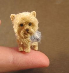 miniatures..uhh you neeed this!! @Cara Lowery