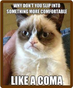 Funny Cat Humor Grumpy Cat Slip Into Something Comfortable Refrigerator Magnet