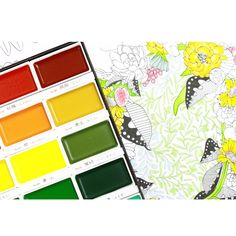 Kuretake Gansai Tambi Japanese Watercolour Paints (36 Colour Set): Amazon.co.uk: Office Products