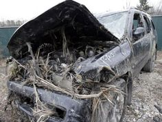 injury and car safety news