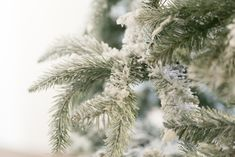 Have you ever wanted to learn how to flock a Christmas Tree? If you have an artificial Christmas tree, you can spruce it up to look like new using these tips! Flocked Artificial Christmas Trees, White Christmas Trees, Flocked Christmas Trees, Christmas Mantels, Silver Christmas, Christmas Villages, Victorian Christmas, Vintage Christmas Ornaments, Christmas Tree Decorations