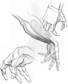 Forms And Structures Drawing Hands