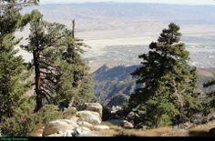 Mount San Jacinto Natural History Association (NHA) California State Park
