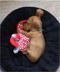 Sleepy baby .
