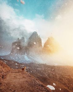 "Photo by @its_jjayjay  Nico the golden retriever was in the right place at the right time with his human friend Julian Troi (@its_jjayjay) to catch this stunning scene in Italy's Dolomite Mountains. ""We were surrounded by wind and snow, but soon the fog disappeared and the sun shone through the clouds,"" says Julian. ""Even Nico seemed to be really impressed by the scenery."" 🐶 #TheWeekOnInstagram"