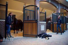 - Art Of Equitation Dream Stables, Dream Barn, Tallit, Pet Fish, Horse Stalls, Horse Farms, Farm Life, Equestrian, Yard