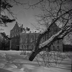 Tampereen yhteiskoulu 1930-1940