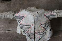 Triangles on Bull Skull
