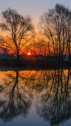 England evening sunset, trees, water reflection ♥g♥
