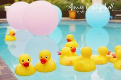 """Float giant 36"""" pink and blue balloons and yellow duckies in the pool - super cute for a gender reveal!"""