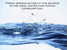 Fresh spring water at the source is the ideal water for human consumption    #health #wellness #nutrition #nutritionist #fitness #water