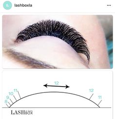 Rounded pattern for lash extensions by LashBoxLA