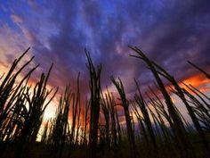 #landscape #photography
