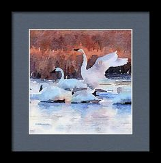 Framed Print featuring the painting Settling In by Michele Ross