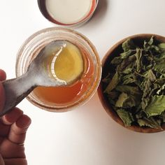 Lemon Balm Infused Honey to Soothe Anxiety / Spring CSH Share — Portland Apothecary