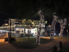 Decoração de Natal na Casa Eficiente da Eletrosul, em Florianópolis.