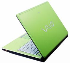 I'm not picky. I just want a bright green lap top. (Kidding,mostly, I'll setal for one that works hard and isn't too heavey to carry around.)