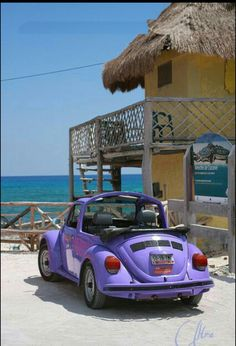2 of my favorite things... VW Bugs and the beach!