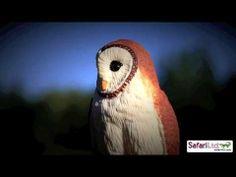 ▶ Safari Ltd Wings of the World Barn Owl - YouTube