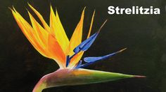 How to paint flowers in acrylic - Bird of paradise flower paint along tu...