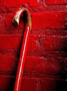 red cane against red bricks Color Explosion, Colors Of Fire, Mood Colors, I See Red, Simply Red, Red Bricks, Painted Bricks, Red Aesthetic, Colour Board