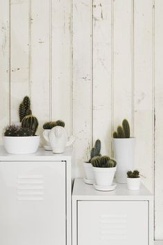 White pots, simple cactus, additional white object