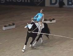landofjules: vaultamazing: We dance. Horseback breakdancing