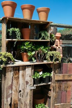 found objects for garden display
