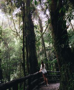 Watching the clouds pass through the rainforest ☁️ by tuulavintage / Mistico Arenal Hanging Bridges Park-Costa Rica