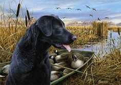 Wildlife art prints plus original paintings with a wide selection from ...