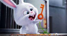 The Secret Life of Pets - Snowball TrailerComputer Graphics & Digital Art Community for Artist: Job, Tutorial, Art, Concept Art, Portfolio