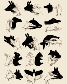 how-to...hand shadows!