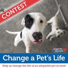 1-800-PetMeds Cares™