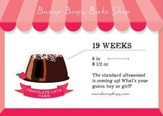 Bump Boxes - compares size of your baby to desserts! 19 Weeks Pregnant