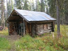 A remote cabin in the woods - HomesteadNotes - on the Homestead