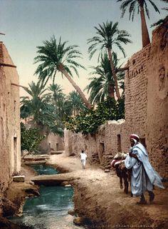 "Africa | ""Rue dans la vieille ville"" - Biskra || Vintage photographic print. ca. 1900"