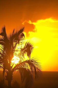 Sunset, Wailea, Maui, Hawaii. Stayed in Wailea last year it's beautiful.