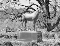 Seabiscuit statue at Ridgewood Ranch
