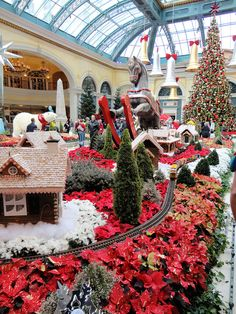 Botanical Gardens, Bellagio Hotel and Casino, Las Vegas, Nevada, USA  CHRISTMAS in LV Nicole & Mom !!!