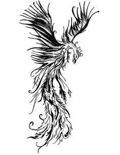 201 Mejores Imágenes De Ave Fenix Tattoos Tattoo Inspiration