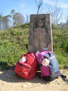 Nei secoli sono stati milioni i pellegrini che hanno percorso il Cammino verso Santiago de Compostela. Io ho percorso gli ultimi 100 km a piedi in 5 tappe ad inizio maggio, partendo da Sarria e fer…
