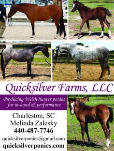 Quicksilver Farms